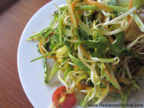 Asian-Green-Salad-with-Mango-Dressing-1-www.RadianceCentral.com_